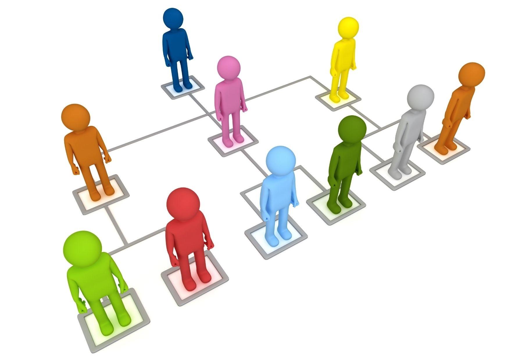 De structuur, indeling en verdeling van cliënten medezeggenschap